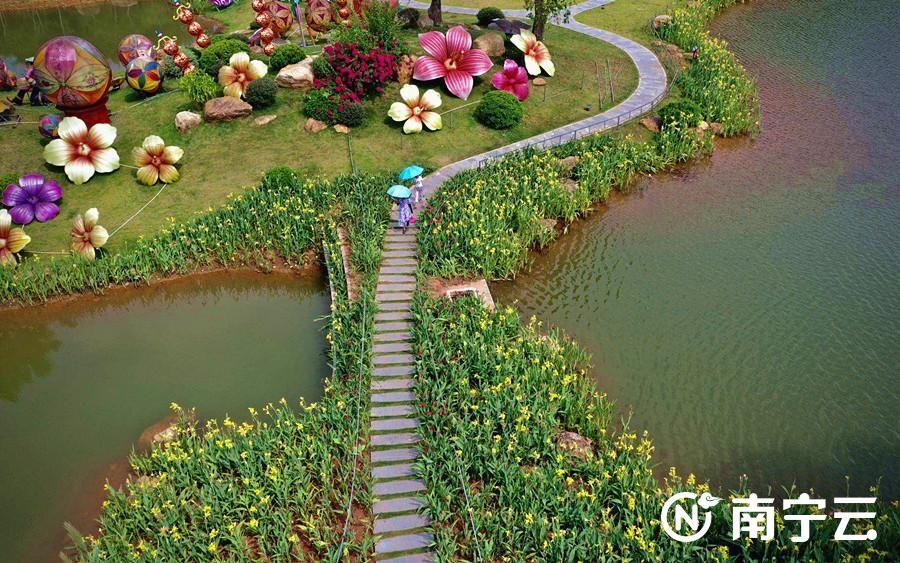 各色水生花卉竞相开放、令人赏心悦目。记者 潘浩 摄