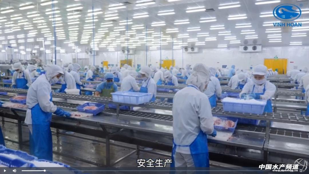 巴沙鱼行业虽处于谷底,但后市需求无比强劲