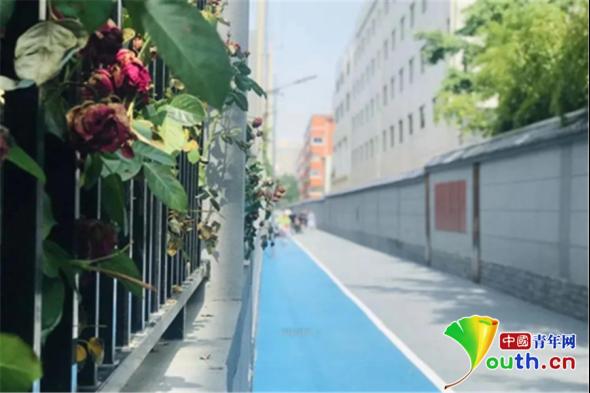 """西安市长安区5条背街小巷今年将""""美丽蜕变"""""""