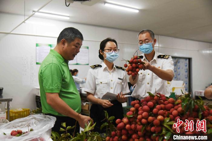 800公斤的广州增城荔枝首次走进东盟市场