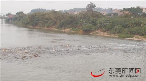 天富官网河流域旗岭断面水质由劣Ⅴ天富官网图片