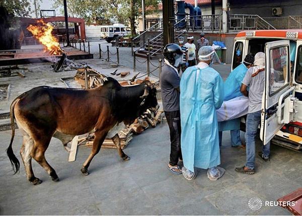 疫情下的印度 从印度制造到自立印度,转向保护主义的借口?