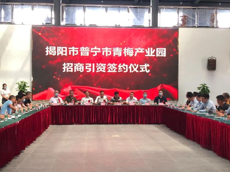 普宁市青梅产业园招商引资签约仪式今天举行