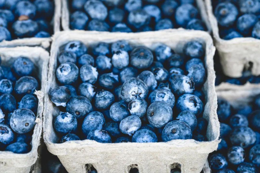 今夏必吃的9种紫色食物,抗氧化,护心血管!宁愿不吃肉也不要错过
