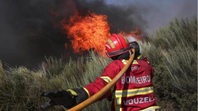 葡萄牙潘皮略萨迪塞拉地区发生森林火灾