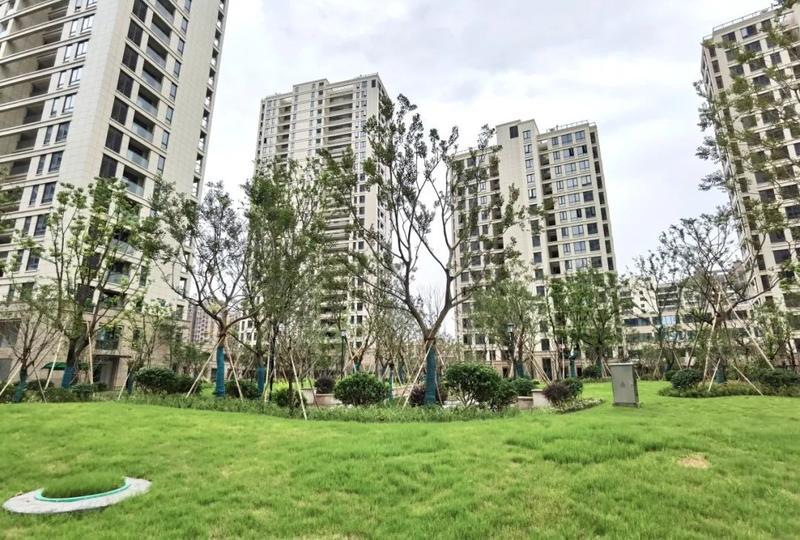 杭州惊现超美白色安置房!隔壁就是千万豪宅,这阳台视野……秒杀多少商品房