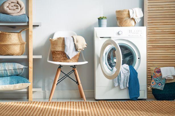 奇迹!澳一宠物猫躲进洗衣机打盹 被清洗12分钟后存活