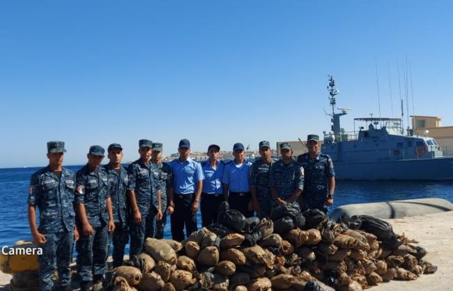 埃及海军挫败一起海上毒品走私案件 缴获大麻304件