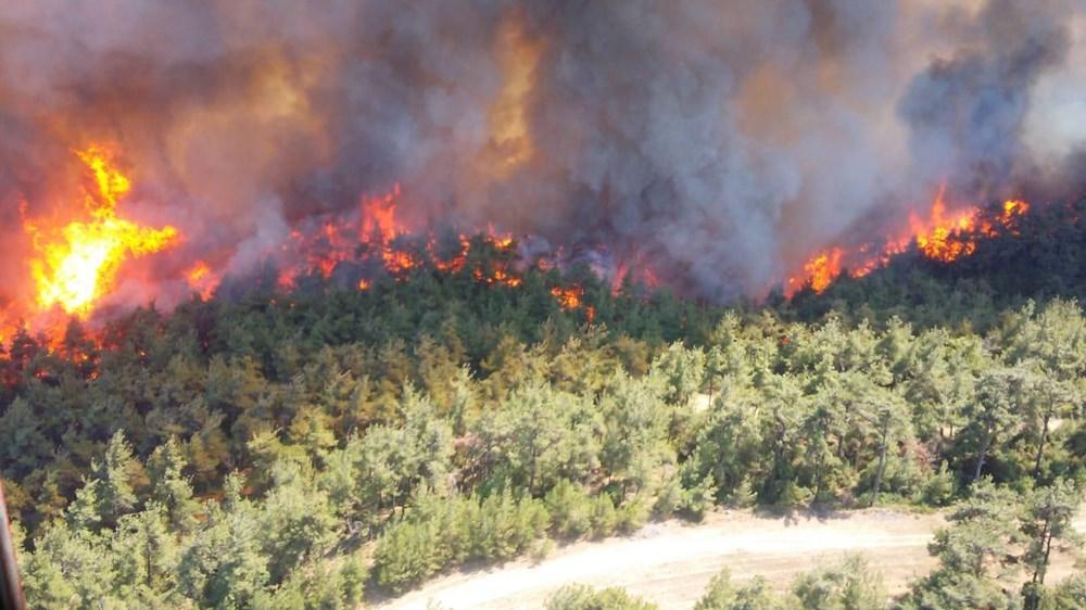 土耳其西部突发森林火灾 救火行动仍正在进行