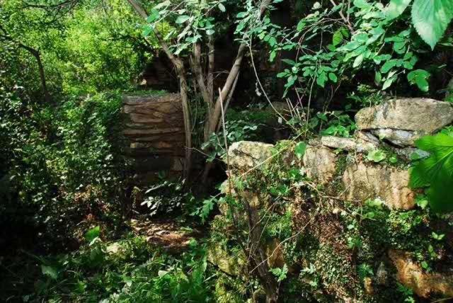山村里为何矗立着一座5米高杏悦母亲雕像,杏悦图片