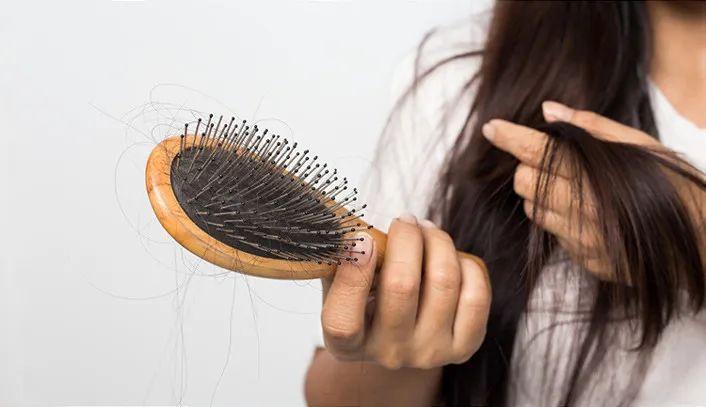防脱固发!用姜+何首乌洗一洗,新发长好快