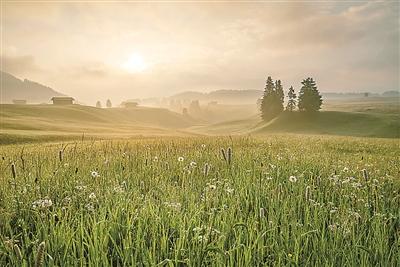 农业公园:一道别样的乡村风景