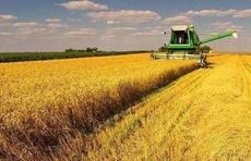 山东种业集团发布去年财务报告 营收达3.21亿元