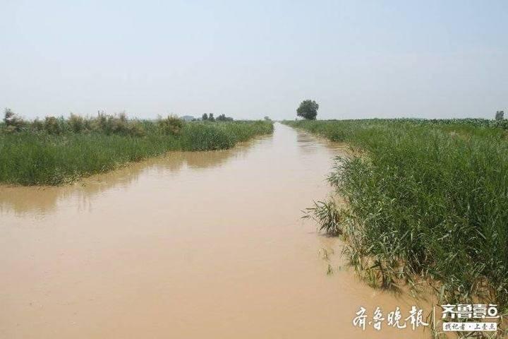 刁口河生态补水推进创历史之最 水头到目的地仅用133小时
