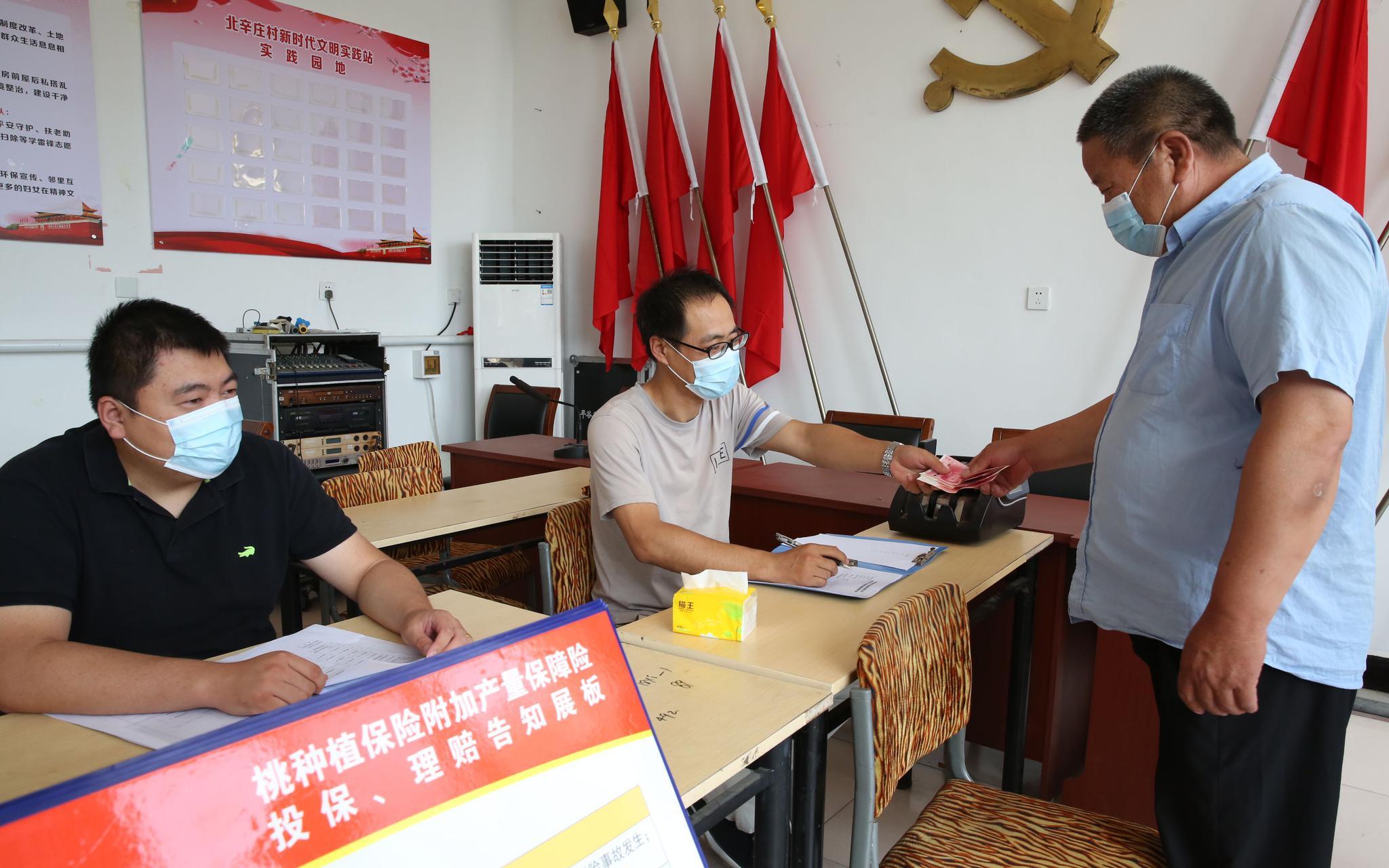 京郊大桃有了产量险 遇灾害每亩最高可获赔4200元图片