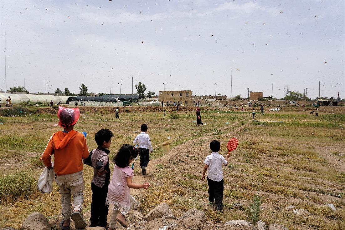物资紧缺 也门再次临近饥荒边缘