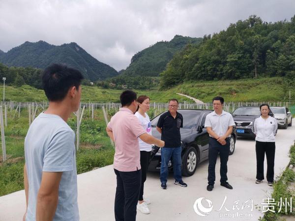 吴晓敏副县长带队到羊架河开展巡河工作