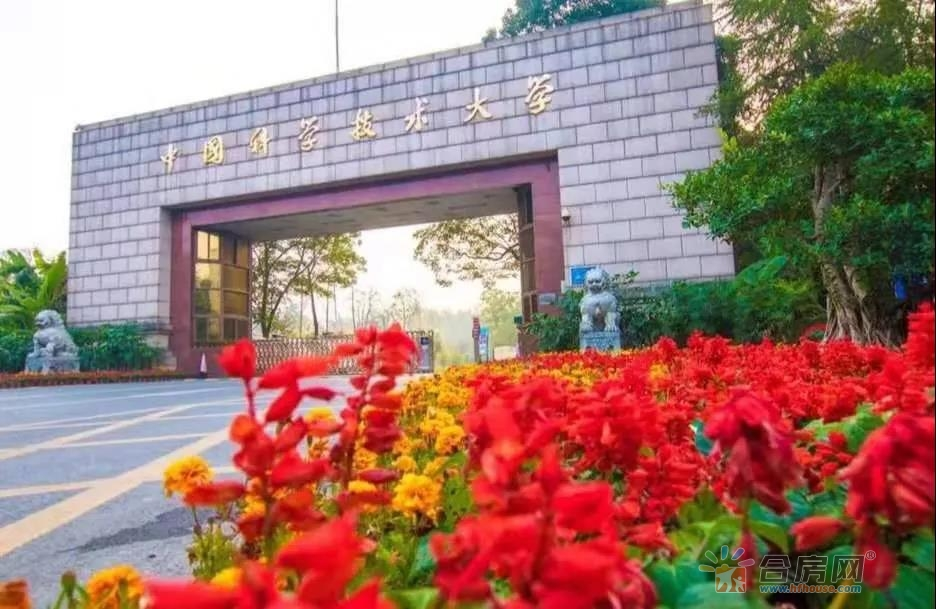 最新全球学术排名:中国科学技术大学全国高校第一