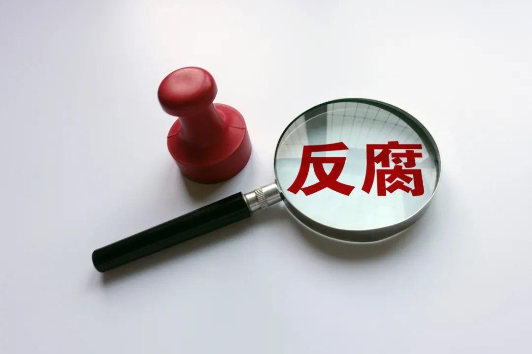 """行贿""""火书记"""",80后商人获刑6年"""