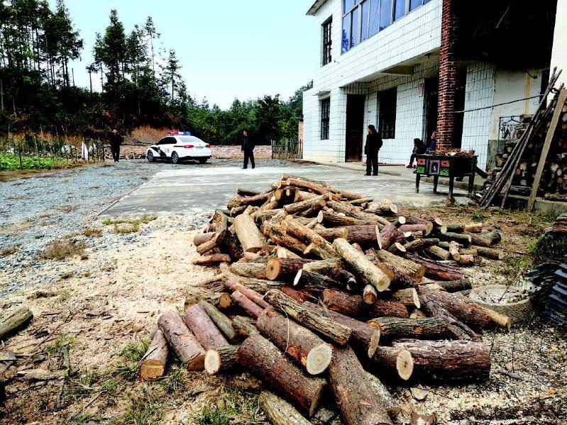 滥伐林木卖给他人牟利,买方卖方均构成违法