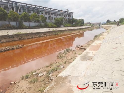 东莞市东引运河现场指挥部巡查镇街河涌整治工作 现场发现多条河涌污水直排