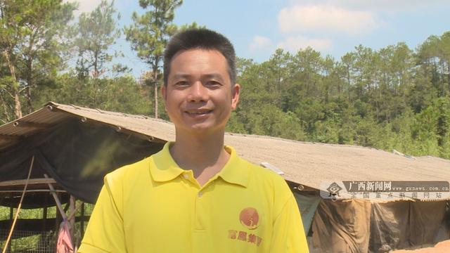 """「你笑起来真好看」梧州:村村有产业 让贫困户拿稳脱贫""""饭碗"""""""