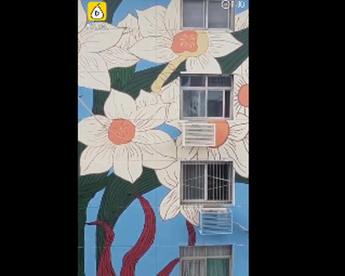 老旧小区11栋楼变身涂鸦墙,为小区增加了抹艺术范儿