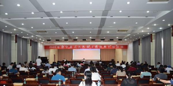 河南省洛阳市法学会理事刘胜春为洛宁县人大代表作《民法典》专题培训
