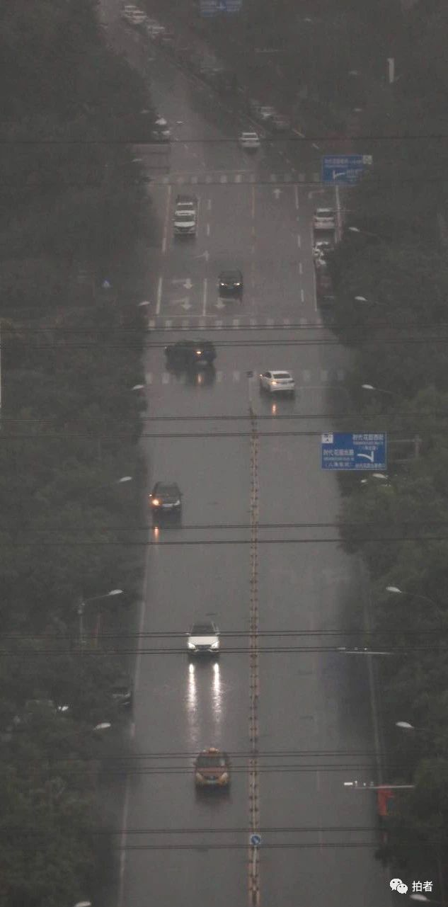 △时代花园西街,汽车在大雨中行驶。摄影/新京报记者浦峰
