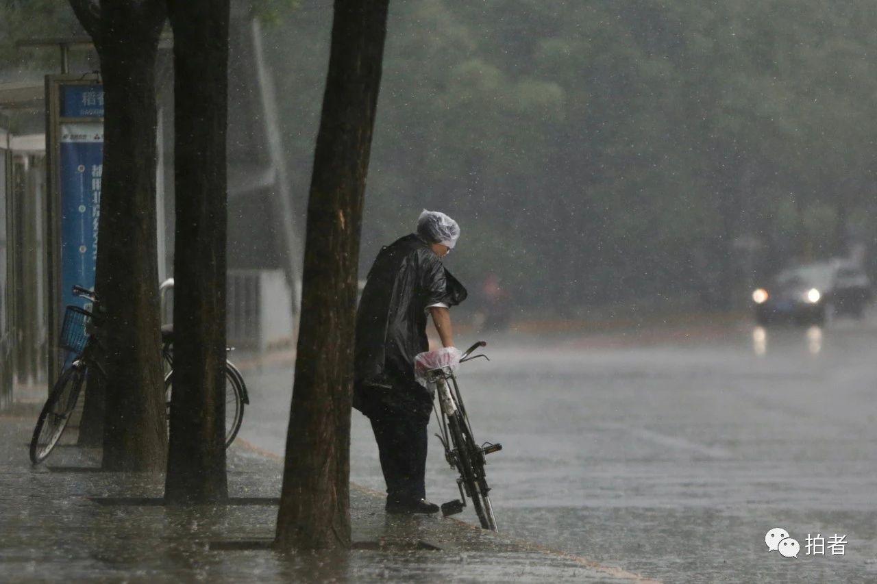 △海淀区万泉河路,市民头戴塑料袋、身穿雨衣出行。摄影/新京报记者郑新洽