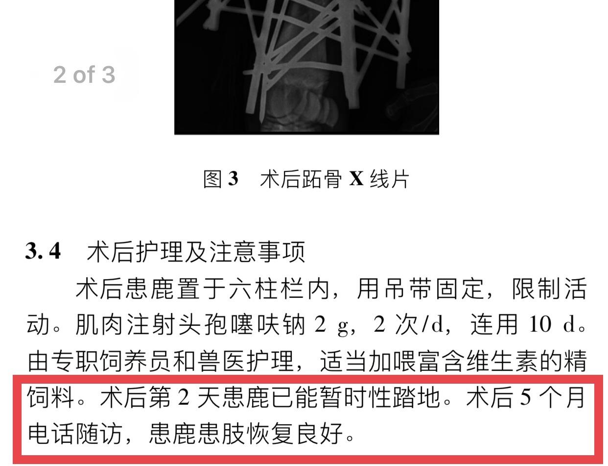 """死亡长颈鹿在期刊""""复生"""",作者:结论为提前假设,已申请勘误"""