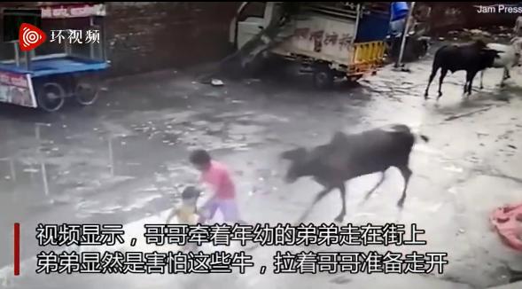 印度一头公牛突然袭击两男孩 被路人扔砖头赶走