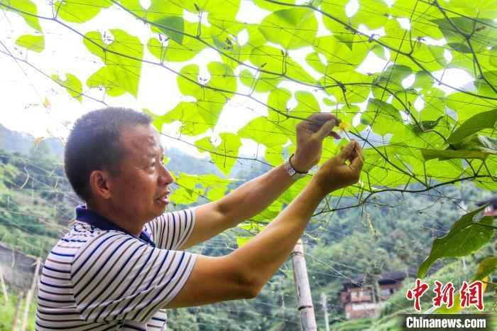 旅游名城广西桂林创新旅游扶贫新