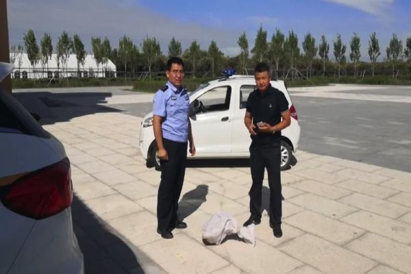 """黑龙江同江市公安局救助一只""""长嘴苍鹭""""属国家二级保护动物"""