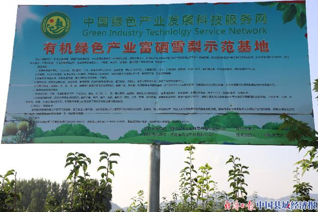 河南省桐柏县:大力发展林果经济 增加人