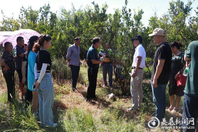 娄底:科普大讲堂进农村 为果农提供虫害防治技术