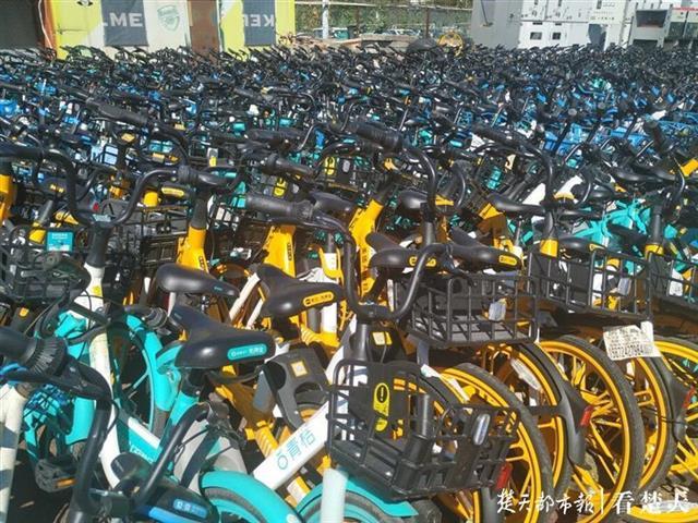 光谷一空地堆放万余辆共享单车,城管部门:临时中转点
