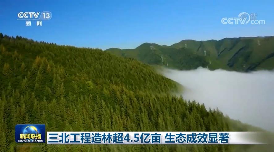 三北工程造林超4.5亿亩 生态成效显著