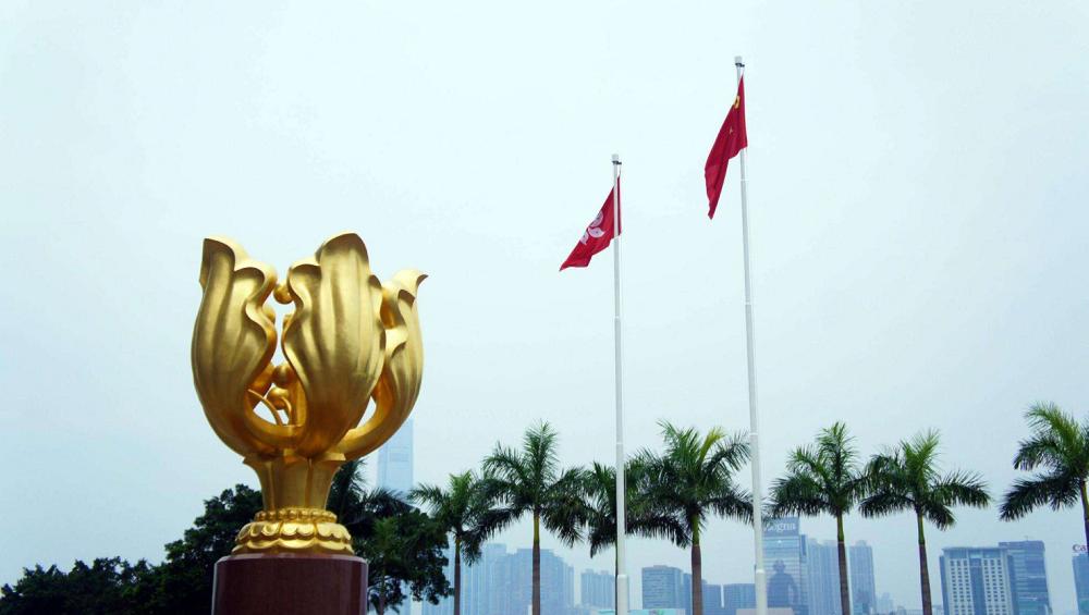 非洲观察丨非洲多国人士:香港推迟立法会选举体现生命至上理念 世界各国应给予充分理解和支持