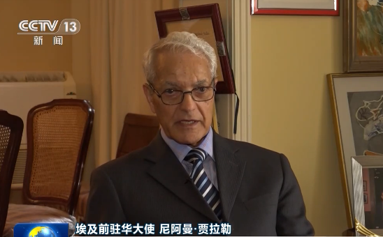 多国人士:推迟选举利于维护香港繁荣稳定