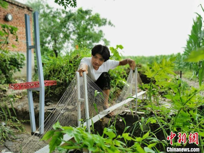 """河南一农村大学生地里建""""高铁"""" 正在建设""""三期工程"""""""