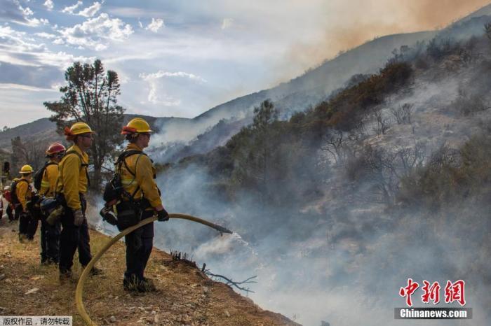 资料图:当地时间8月14日,美国加州洛杉矶休斯湖,消防员在火灾现场进行扑救。