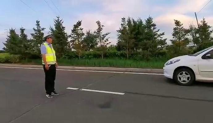 【全警实战训练】全国及省内道路交通安