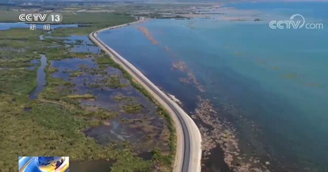 新疆博斯腾湖迎来秋捕黄金季 绿色通道助力渔民增收