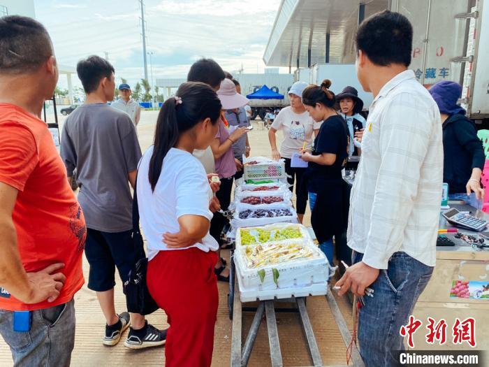 """海南最大农产品一级批发市场开业 将起稳定""""菜篮子""""作用"""