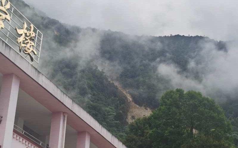 发生滑坡后的山体。受访者供图