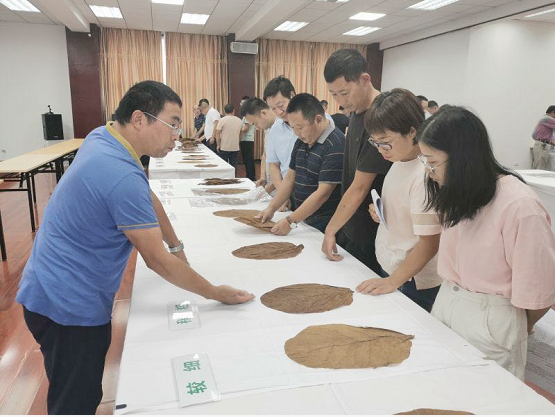《湖北省雪茄烟叶等级质量规范》宣贯培训会在恩施成功举办