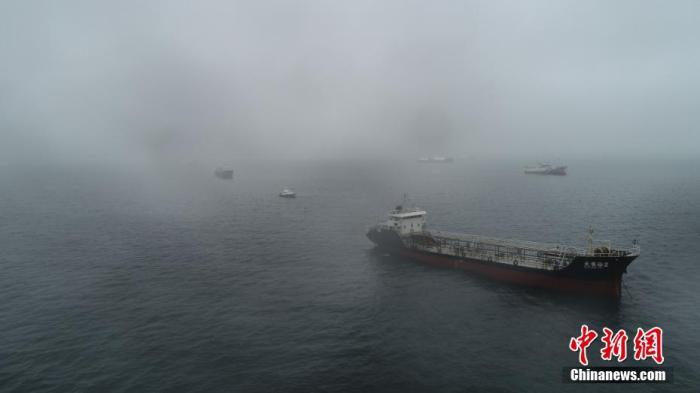 """受即将来临的8号台风""""巴威""""影响,山东烟台26日继续发布海上风险黄色预警,各涉海力量全面进入临战状态,大量船舶在烟台港锚地避风。郝光亮 摄"""