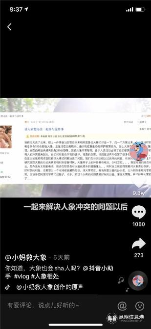 马云阿里内网发帖号召员工解决云南人象冲突问题