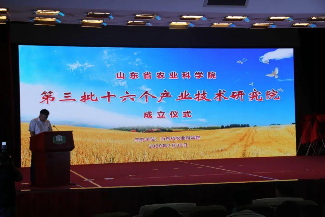 山东省农业科学院第三批产业技术研究院揭牌 圣谷山参与共建(日照)绿茶产业技术研究院